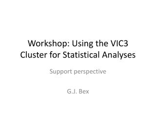 Workshop: Using the VIC3 Cluster for Statistical Analyses