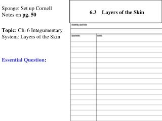Sponge: Set up Cornell Notes on  pg. 50 Topic:  Ch. 6 Integumentary System: Layers of the Skin