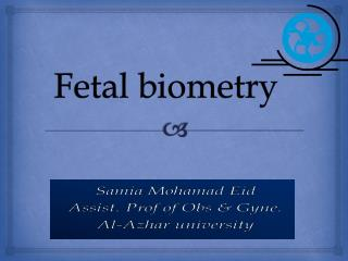 Fetal biometry
