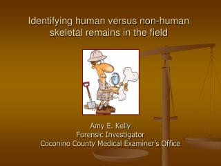 Identifying human versus non-human skeletal remains in the field