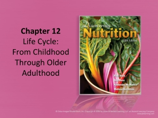 Life Cycle: From Childhood through Adulthood
