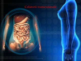 CALATORII    TRANSCUTANATE