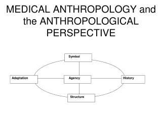 MEDICAL ANTHROPOLOGY and the ANTHROPOLOGICAL PERSPECTIVE