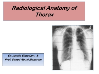 Assessment of the Chest and Lungs