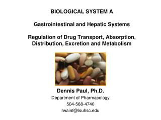 Dennis Paul, Ph.D. Department of Pharmacology 504-568-4740 rwainf@lsuhsc.edu