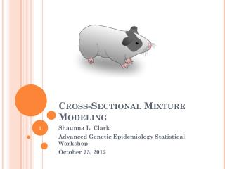 Cross-Sectional Mixture Modeling