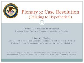 Plenary 3: Case Resolution  (Relating to Hypothetical)