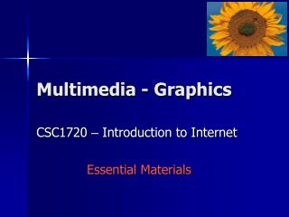 Multimedia - Graphics