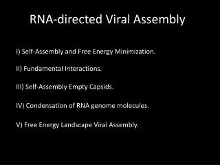 RNA-directed Viral Assembly