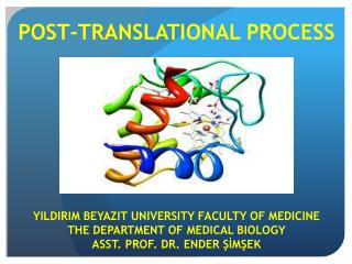 POST-TRANSLATIONAL PROCESS YILDIRIM  BEYAZIT  UNIVERSITY FACULTY OF MEDICINE