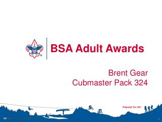 BSA Adult Awards