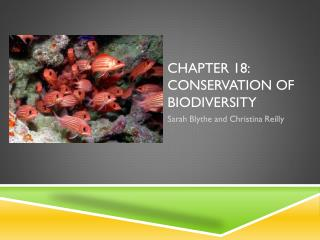 Chapter 18: conservation of biodiversity