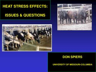 HEAT STRESS EFFECTS:  ISSUES & QUESTIONS