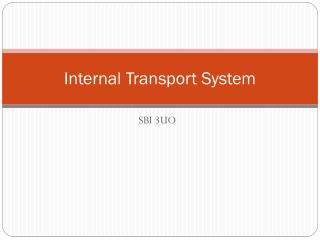 Internal Transport S ystem