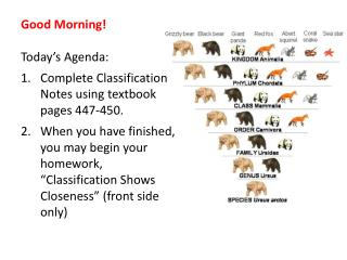 Good Morning! Today's Agenda: Complete Classification Notes using textbook pages 447-450.