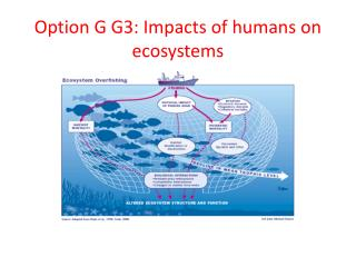 Option G G3: Impacts of humans on ecosystems