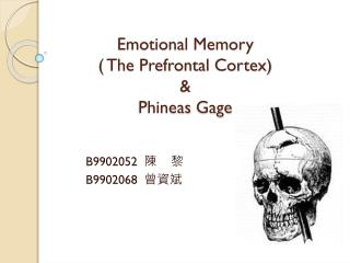 Emotional Memory  ( The Prefrontal Cortex)   &  Phineas  Gage