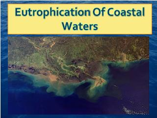 Eutrophication  Of Coastal Waters
