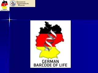 DNA  Barcoding  in Germany