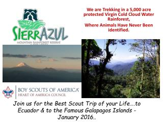 We are Trekking in a 5,000 acre protected Virgin Cold Cloud Water Rainforest,