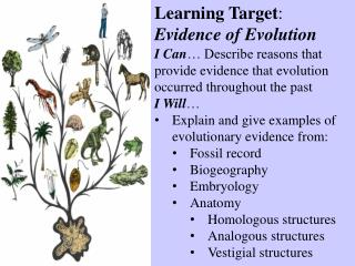 Learning Target : Evidence of Evolution
