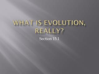 What is evolution, really?