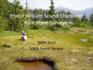 Prince William Sound Shoreline Rare Plant Surveys