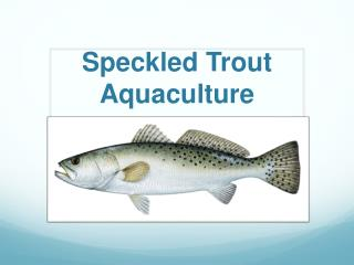 Speckled  T rout Aquaculture