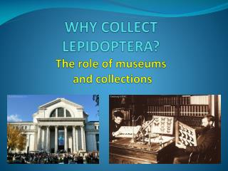 WHY COLLECT LEPIDOPTERA?  The role of museums  and collections