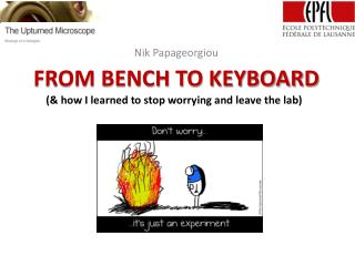 FROM BENCH TO KEYBOARD