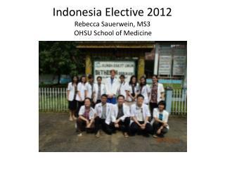 Indonesia Elective 2012 Rebecca  Sauerwein , MS3     OHSU School of Medicine