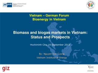Biomass and biogas markets in Vietnam: Status and Prospects