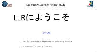 Laboratoire Leprince-Ringuet (LLR) -------------------------------------------------