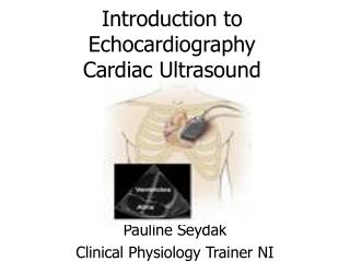 Introduction to Echocardiography Cardiac Ultrasound