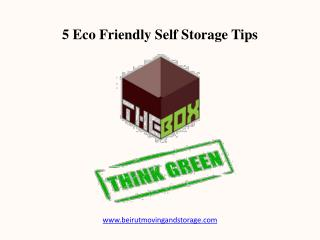 5 Eco Friendly Beirut Self Storage Tips