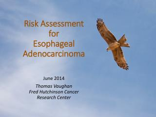 Risk Assessment for Esophageal Adenocarcinoma