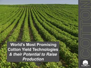 World's Most Promising Cotton Yield Technologies  & their Potential to Raise Production