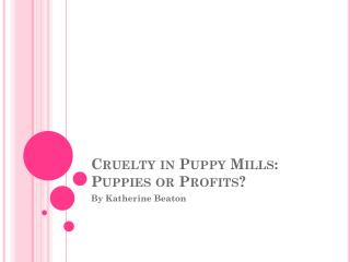 Cruelty in Puppy Mills: Puppies or Profits?