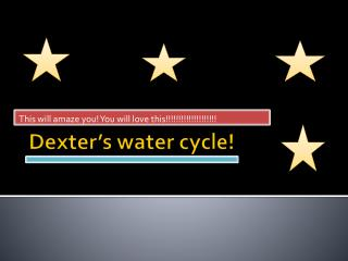 Dexter's water cycle!