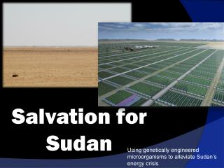Salvation for Sudan