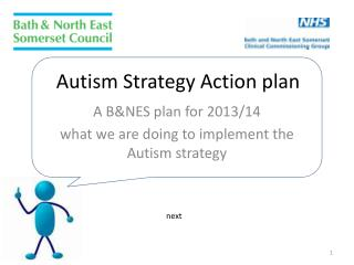 Autism Strategy Action plan