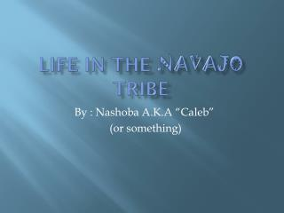 Life in the  Navajo  tribe