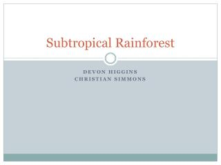 Subtropical Rainforest