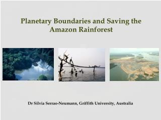 Planetary  Boundaries and  Saving the  Amazon Rainforest