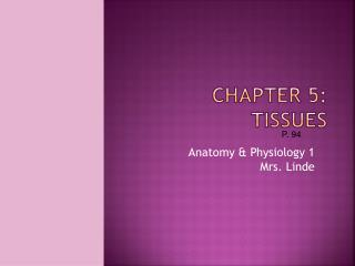 Chapter  5 :  Tissues