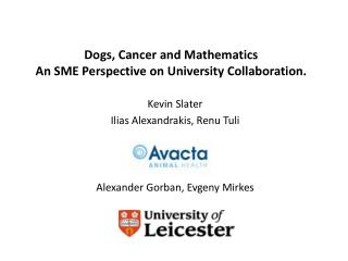 Dogs, Cancer and Mathematics An SME Perspective on University Collaboration.