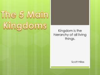 The 5 Main Kingdoms