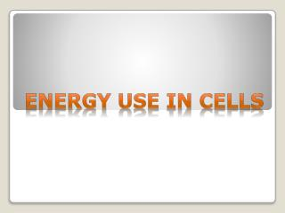 Energy Use In cells