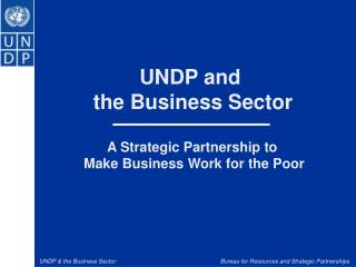 UNDP and  the Business Sector