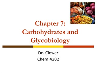 Chapter 7: Carbohydrates and Glycobiology